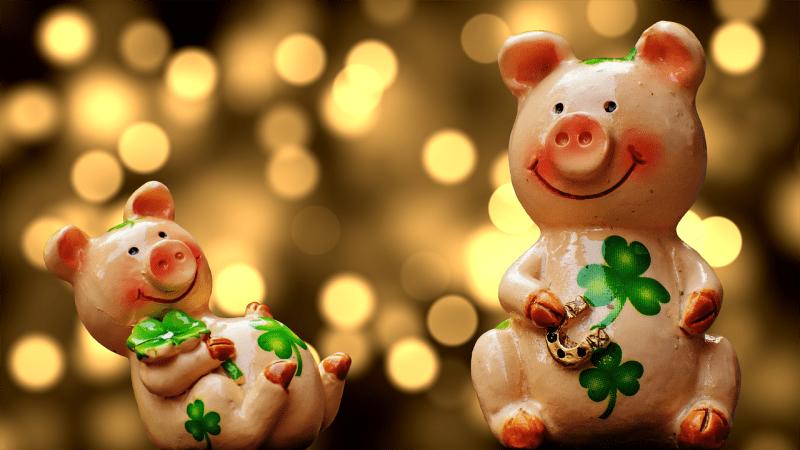 Пословицы и поговорки про свинью