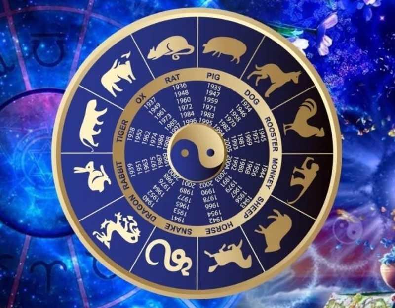 Восточный гороскоп: в год какого животного рождаются самые одаренные люди
