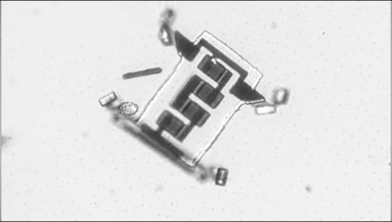 Нанороботов научили путешествовать по телу человека | [ВИДЕО]