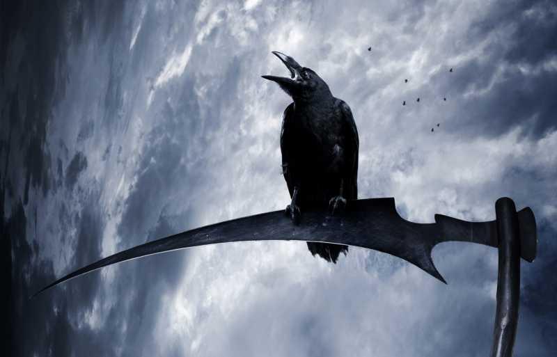 Кому поёт вещая птица? Легенды о чёрном вороне