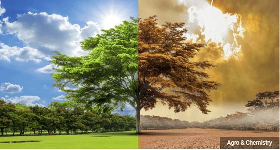 Среднегодовая температура на Земле будет расти минимум на 1 градус