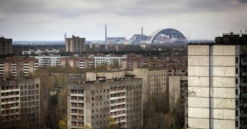 Чернобыльский грибок защитит будущих космонавтов