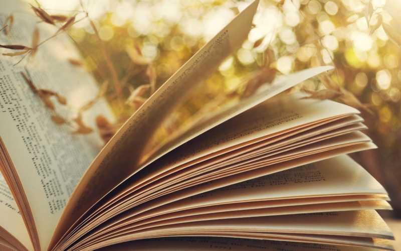 Топ-10 самых ожидаемых книг июля