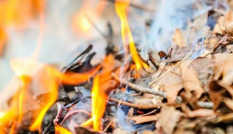 Хотел сжечь листья, а пришлось покупать соседский дом