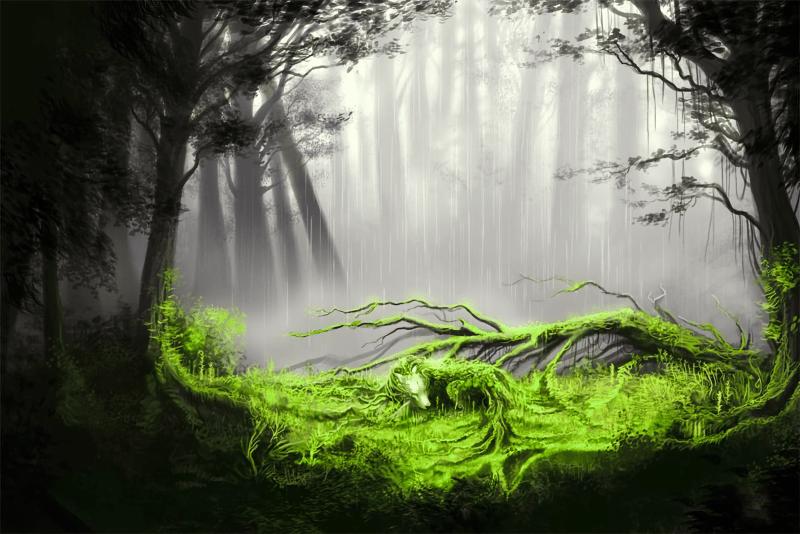 Лесные духи разных народов