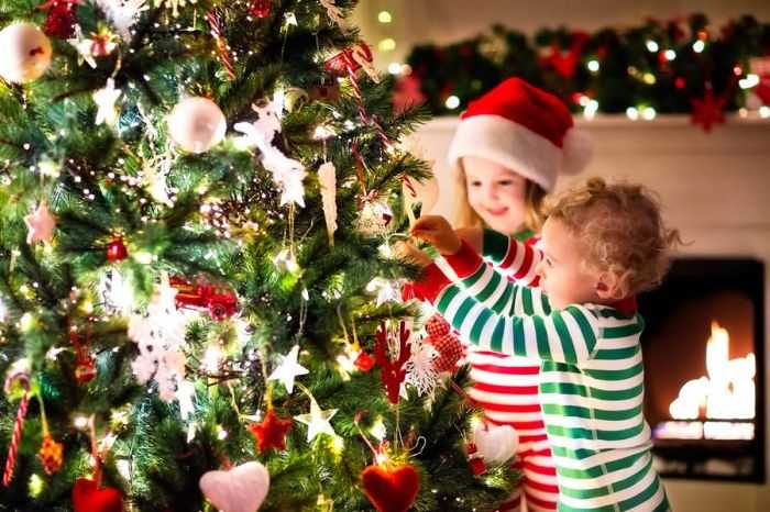 Почему на Новый год наряжают елку?