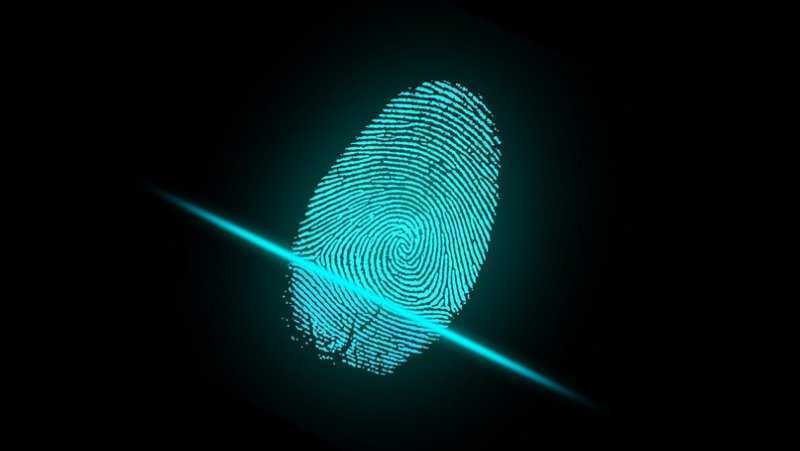 Владельцы смартфонов с Android смогут логиниться в сервисах Google по отпечатку пальца
