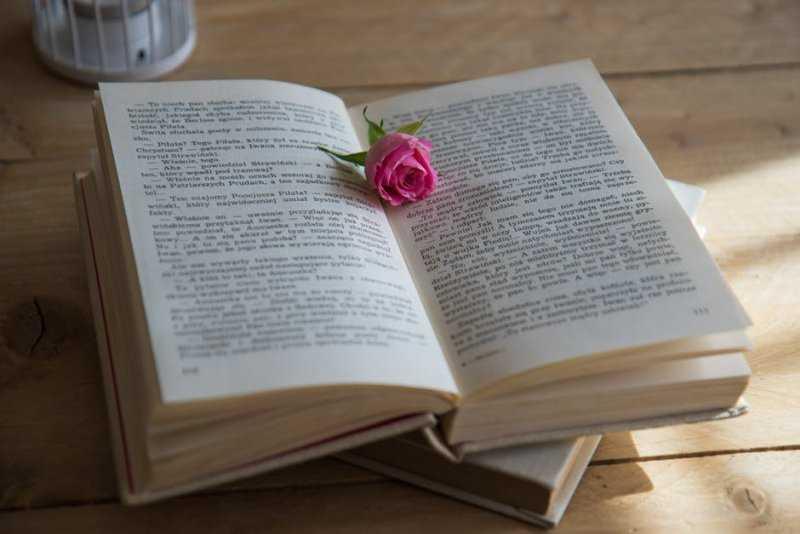 24 книги о любви, которые не стыдно прочитать