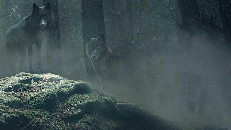 Волколак в славянской мифологии