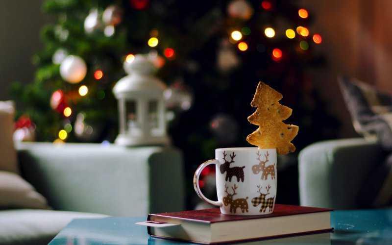 Книги для новогоднего настроения (часть 1)