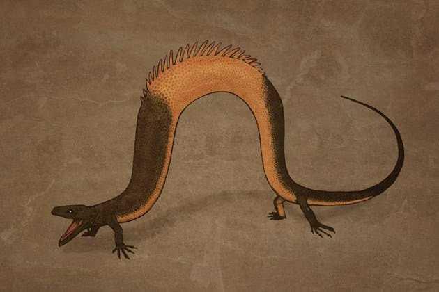 Как выглядели бы обычные животные, будь они воссозданы как динозавры — по скелетам