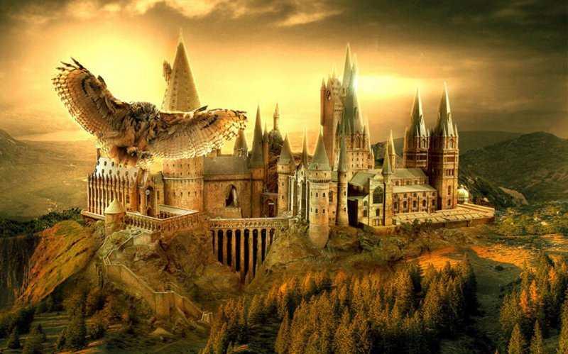 Не Хогвартсом единым: 8 магических школ и академий в литературных произведениях