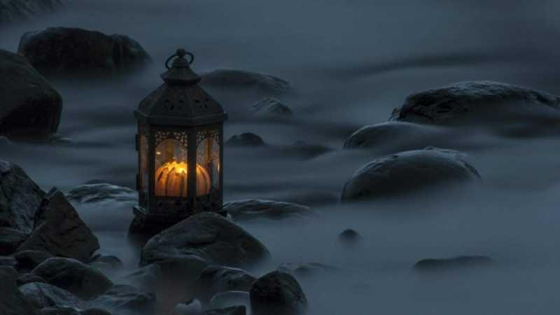 Шёпот в темноте