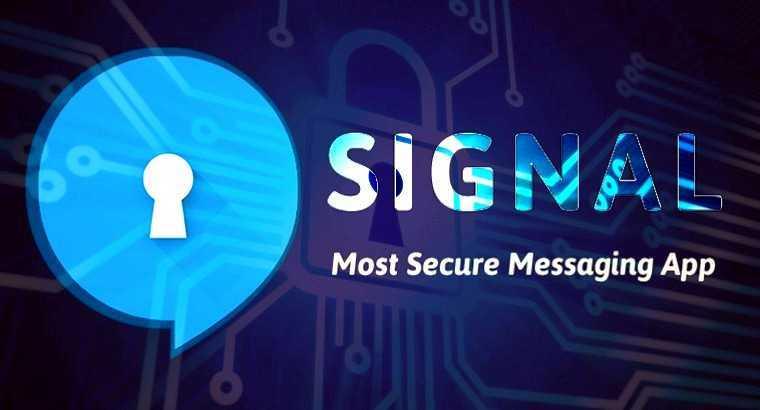 Илон Маск советует мессенджер Signal. Чем он лучше (и хуже) Telegram