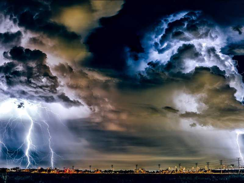 Предвещает ли бурю буревестник?