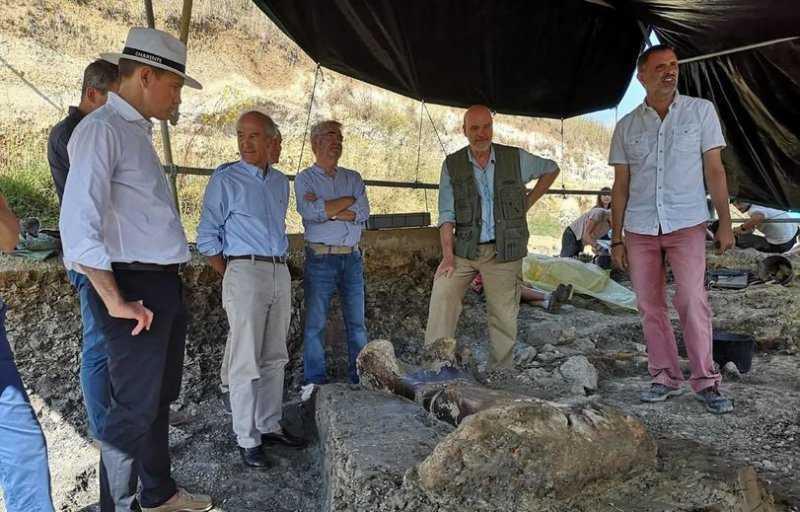 Гигантская бедренная кость динозавра-зауропода обнаружена при раскопках в департаменте Шаранта в западной части Франции.