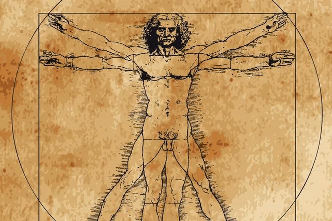 Все мифы и научные факты о мужском организме