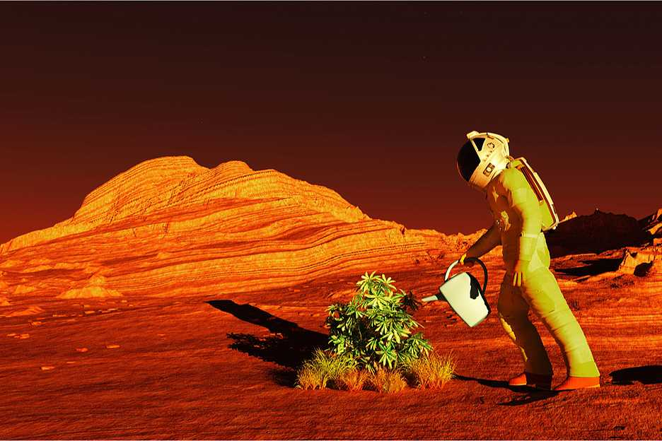 Искусственный интеллект проследит за теплицами на Марсе