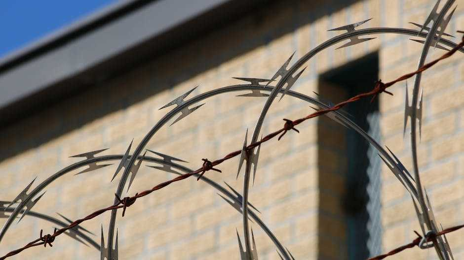 pexels photo 3993513 - Жительницу Испании приговорили к тюремному сроку из-за пиратских Windows и Microsoft Office