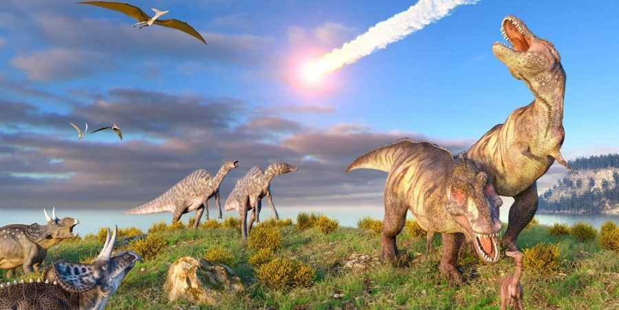 Динозавры начали вымирать задолго до астероида