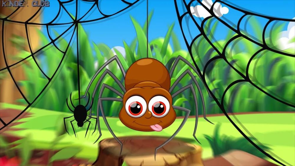 Почему тараканы опасны и отвратительны, а домашние пауки — не очень